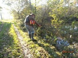 Nettoyage des étangs